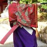 KASUGASHRINEのサムネイル画像