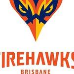 Brisbane Firehawks officially launch bid to become NRL's 17th team 🔥🦅👉 https://t.co/CYeozCyK14