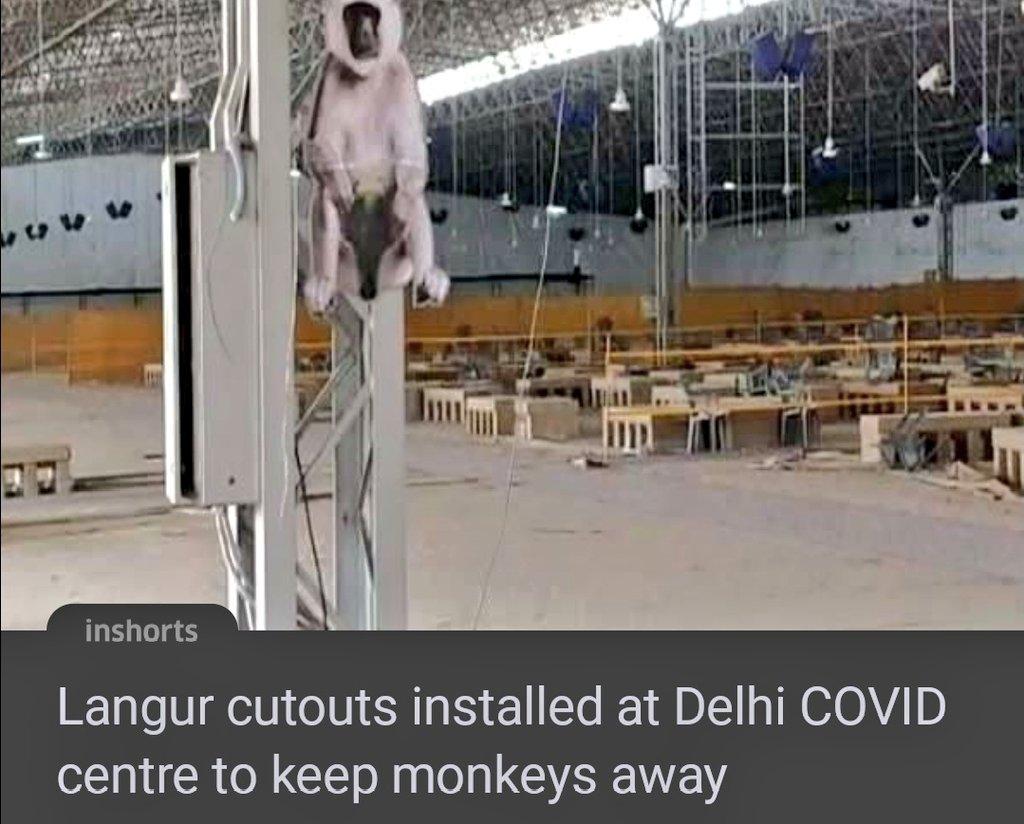 Aap की सुरक्षा ध्यान में रखते हुए यही प्रार्थना करता हूं की ये टोटका काम कर जाए  Hope they stop monkeying around #innovation #monkey #tuesdayvibe