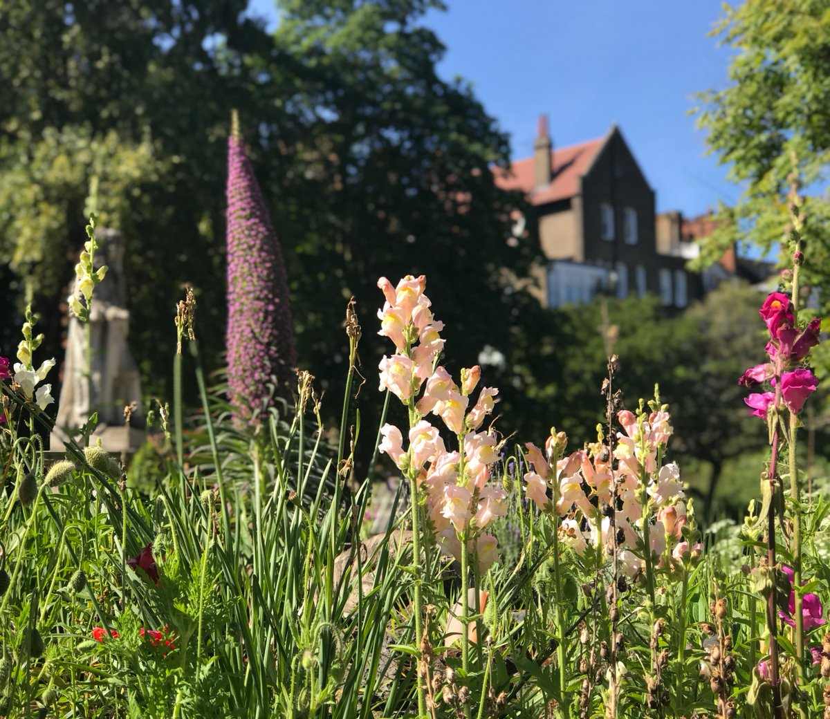 Spring Plant Fair - watch demos from our stallholders and Growing Friends volunteers and grab some food from the Physic Garden Café. New purchases need a helping hand? Head to Muntons Traditional Plant Supports! ow.ly/YC4N50EOfz2 Sat 22 & Sun 23 May #plantfair #gardening