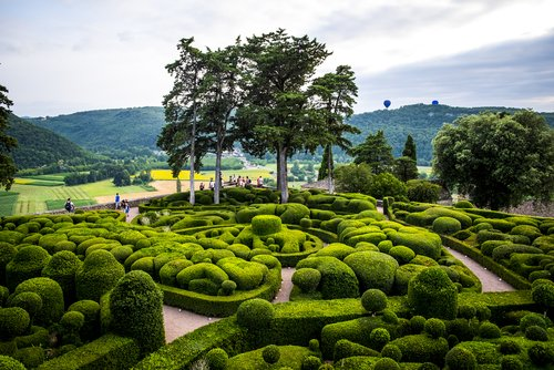 Today we visit Marqueyssac Gardens in the Dordogne , the most visited garden in the south west of France.  Listed as a National Historical Monument, the gardens have over 6km of pathways surrounded by over 150,000 hand-pruned boxwoods.  @Corkcoco  @pure_cork  #purecorkwelcomes https://t.co/OU9jMLCs3E