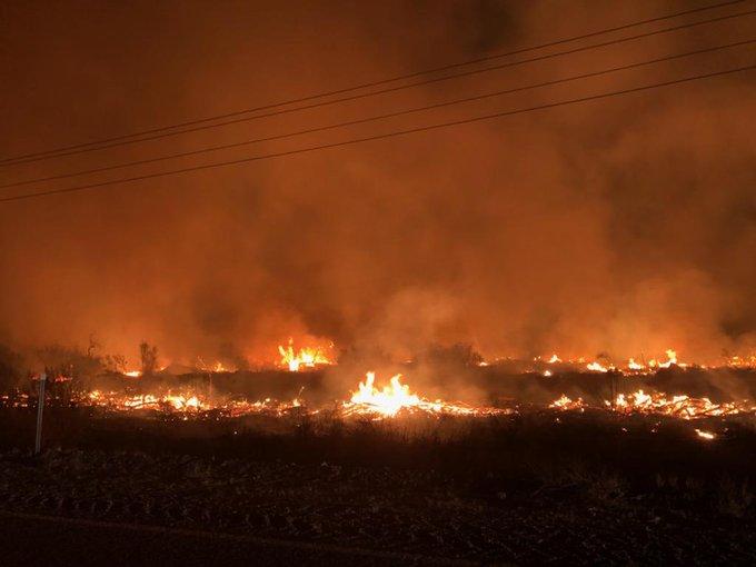 Butler Fire, burning along Gila River near Central-5-22-21-BLM photo