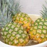 tropicalyahhoのサムネイル画像