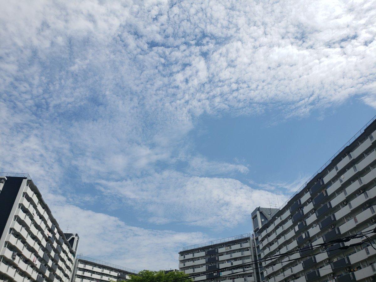 天気 江戸川 区 今日 の 東京 江戸川区の天気
