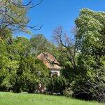 Image for the Tweet beginning: #GartenEinsichten Tag des Parks bei