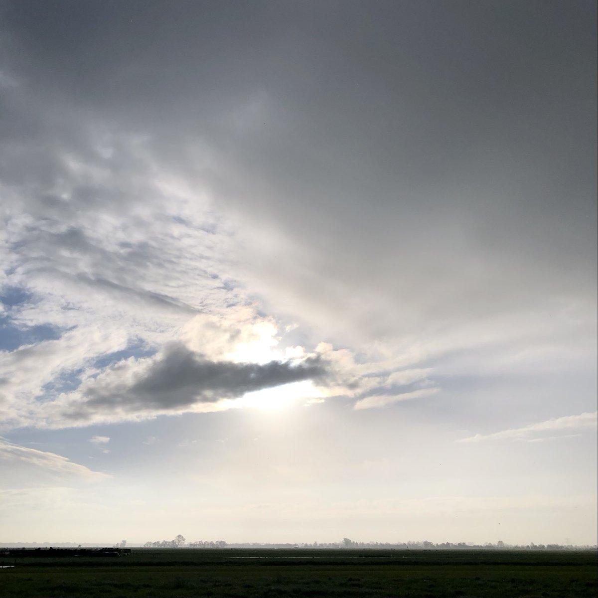 Donkere wolken en zon door elkaar op 25 mei 2021 #goedemorgen #buitenmens #groendijck #driebruggen #platteland #groenehart #santosha #adem https://t.co/3QpjaxsyIq