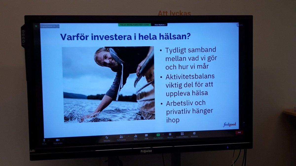 forex office helsingborg