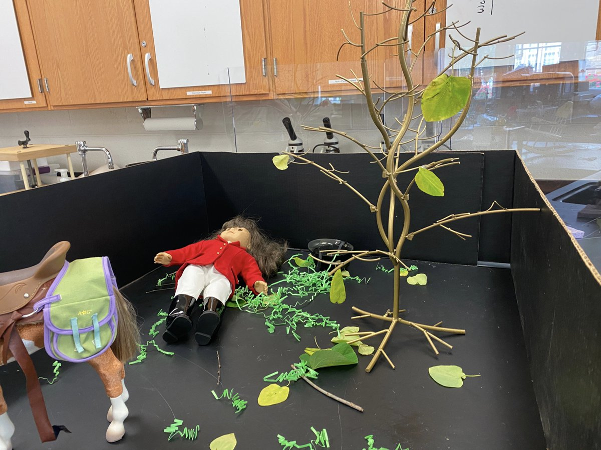 test Twitter Media - Accident or intentional? Setting up dioramas in forensics today. #RyeHighChemClub @kcmittiga84 @NYSMTP https://t.co/3Th9qvEMVc
