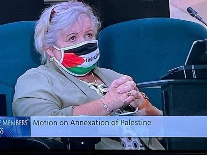 Irish parliament members wearing masks with Palestinian symbols as a solidarity with Sheikh Jarrah and Palestine. #SaveSheikhJarrah 🇮🇪🇵🇸