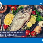 Eating & living well on a global level - key in protecting Earth. But to do so, we need strong SMEs who can adapt to consumer needs & expectations. That's why @AhfesProject is creating a transnational #innovation ecosystem.   More ➡️ https://t.co/j0xWspLaQD  #EUGov4Coop