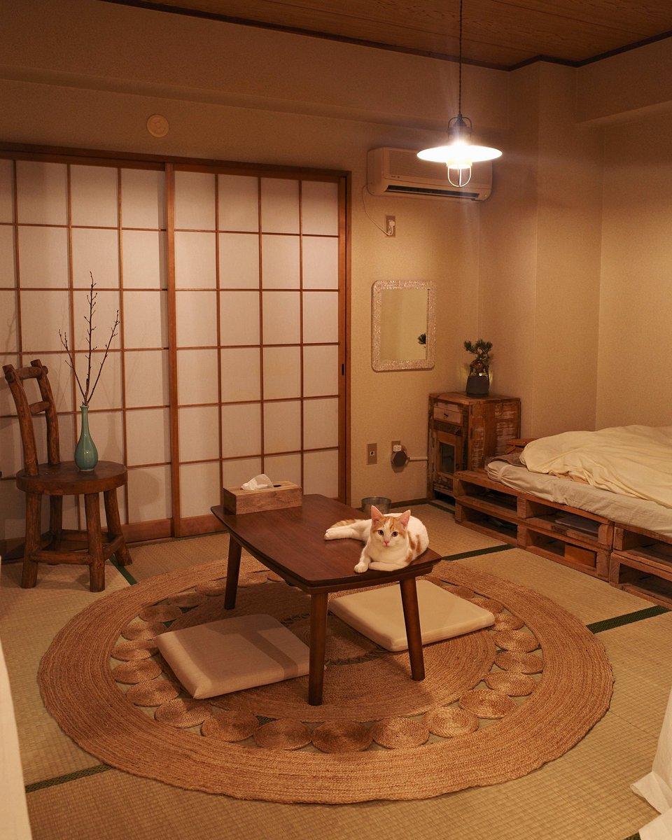 和室に北欧の家具をミックスさせるとこうなる!とても素敵な空間!