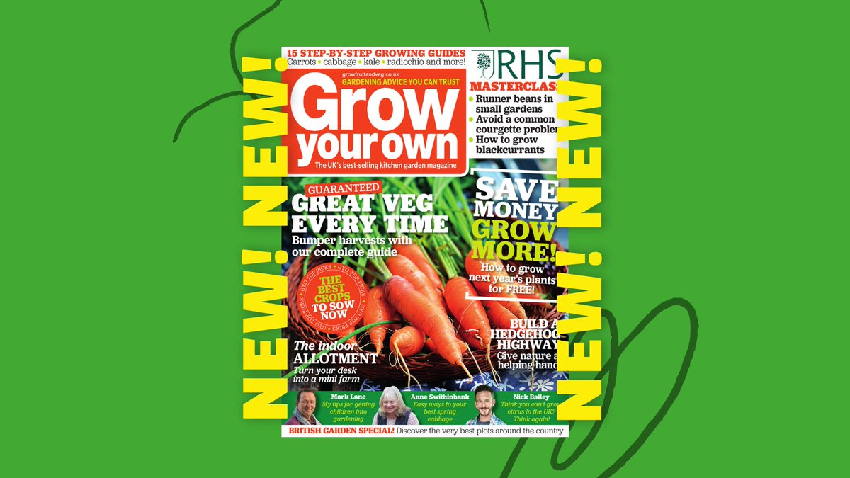 👉NEW ISSUE of Grow Your Own available now! Grab the latest mag for expert advice, garden chat, product recommendations and top tips!  The July issue features contributions from a whole host of amazing experts. Grab a copy in stores now or head to https://t.co/Zg2u5dSUhg https://t.co/v2hgf14dpa