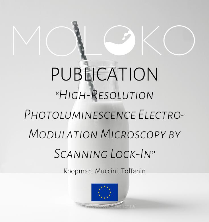 moloko_project photo
