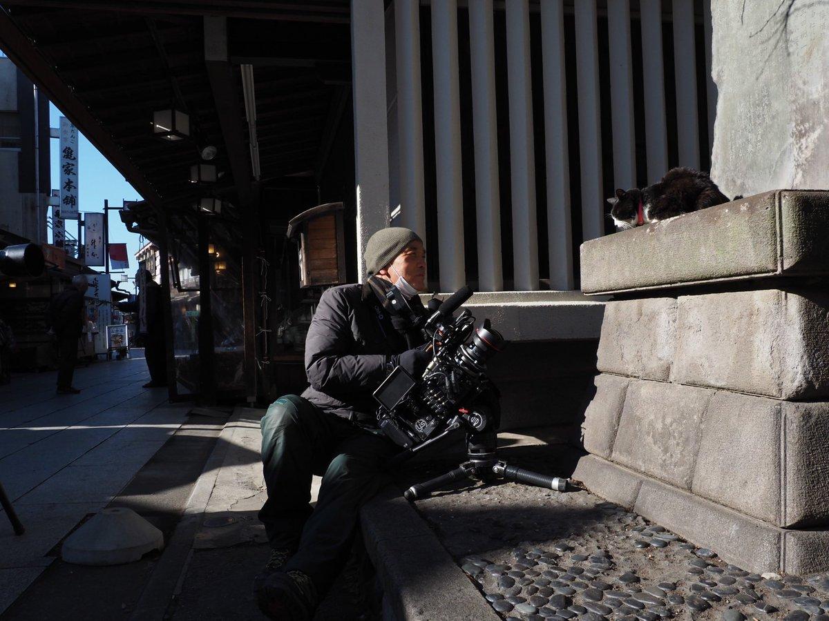 岩合光昭さんの投稿画像