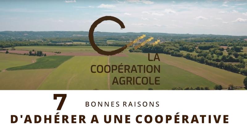 La #SemaineDeLaCoop, c'est déjà terminé !  Avec @lacoopagricole, découvrez les 7 bonnes raisons d'adhérer à une #coopérative !  https://t.co/MbUR1bz4wz