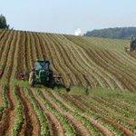 Image for the Tweet beginning: #notizie #sicilia Agricoltura in Sicilia, arrivano