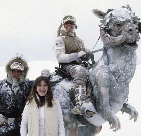 RT @cineasimetrico: Star Wars  Mark Hamill, Harrison Ford y Carrie Fisher en el set de rodaje https://t.co/kHXLm2NpWg