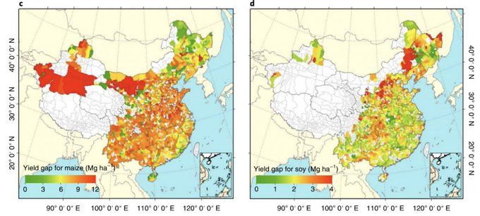 Sustainable production of soy and maize could 'boost yields and cut emissions' in China Photo