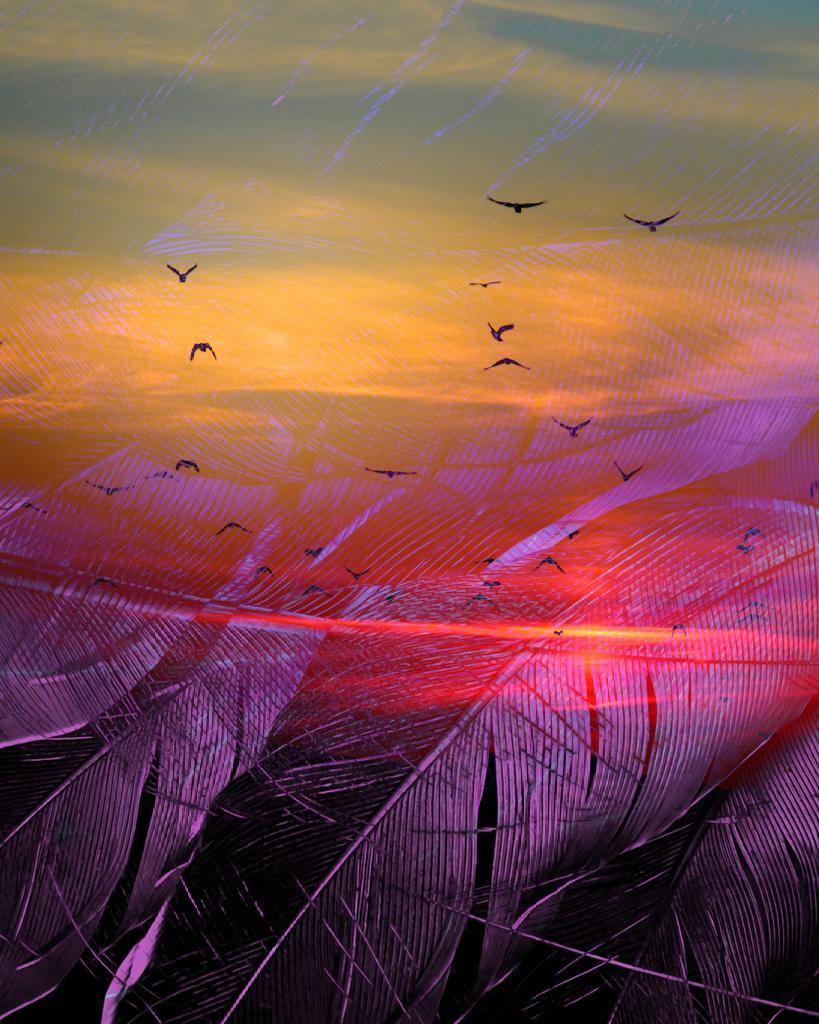 "[14.06.21] ""Bolomi"". . #everydays #aftereffects #videocopilot #element3d #abstract #cinema4d #render #art #graphic #design #3d #feathers #sunset #orange #purple #senegal #wollof #pacotille #motiongraphics https://t.co/RgBTTetkey"