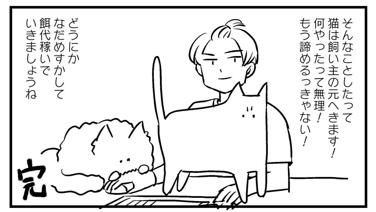 諦めも肝心?!猫に仕事を邪魔されて困っている人たちへのアドバイス!