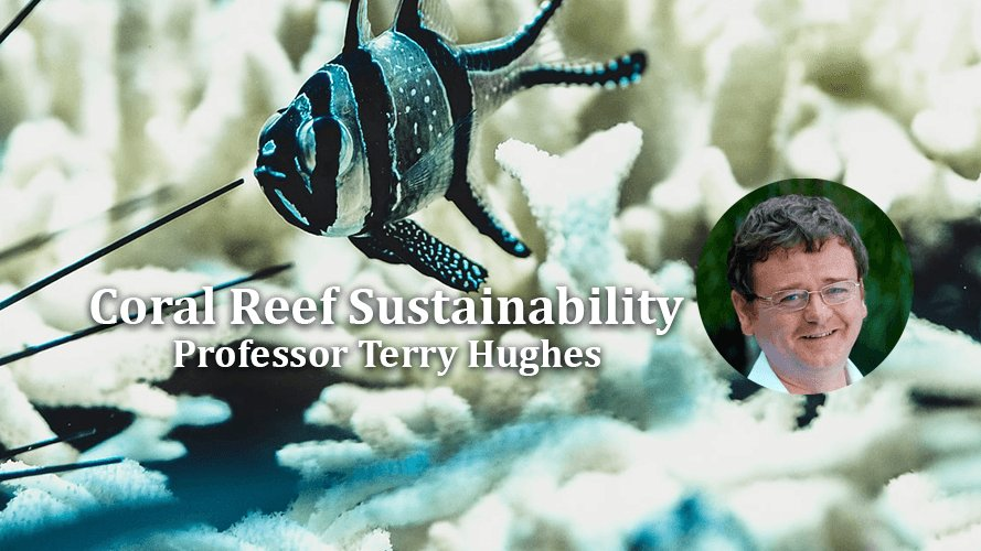 test Twitter Media - DIAS Day Lecture, Online, Friday 18 June at 1pm  'Coral reef sustainability and the damaging effects of coral bleaching on climate change' will be delivered by @ProfTerryHughes.  Registration link🐠 https://t.co/APW6gcJzJP  #DIASdiscovers @dias_geophysics @DIASAstronomy @StpDias https://t.co/aHcKqO5QYQ