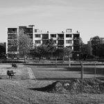 @sander0290 - De zielloosheid en droevenis van een #vinexwijk uit begin jaren 2000.  #Barendrecht #ArchitecturePhotography #architectuur #BlackAndWhitePhoto #BlackAndWhitePhotography #PentaxPhotography #suburban https://t.co/RJKmuE5X3O
