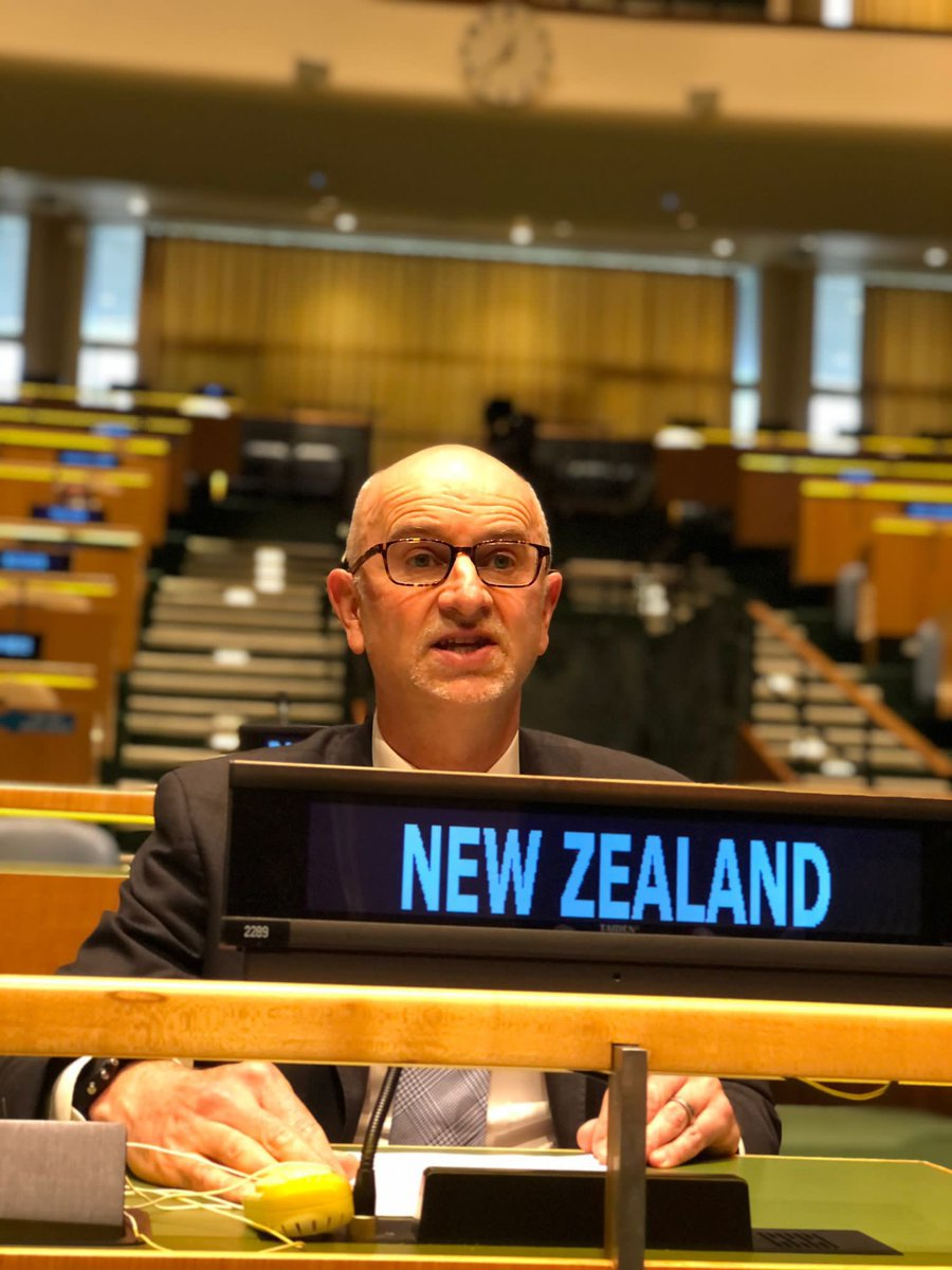 We're pleased to have delivered a statement on behalf of the Group of Friends of Persons with Disabilities to call for a disability-inclusive response to COVID-19. #COSP14 #EveryoneIncluded 🇳🇿 🇲🇽🇨🇷🇦🇷🇦🇹🇧🇴🇭🇺🇪🇸🇦🇪🇱🇮🇸🇪🇩🇴🇪🇨🇵🇦🇹🇷🇬🇧🇪🇺🇨🇦🇨🇭🇷🇴🇫🇮🇧🇪🇵🇼🇺🇸🇦🇺🇩🇪🇧🇷🇿🇦🇧🇬🇵🇭🇵🇱🇰🇷🇬🇷🇮🇹🇯🇲 @CraigHawkeNZ https://t.co/kDhuOIO6jj