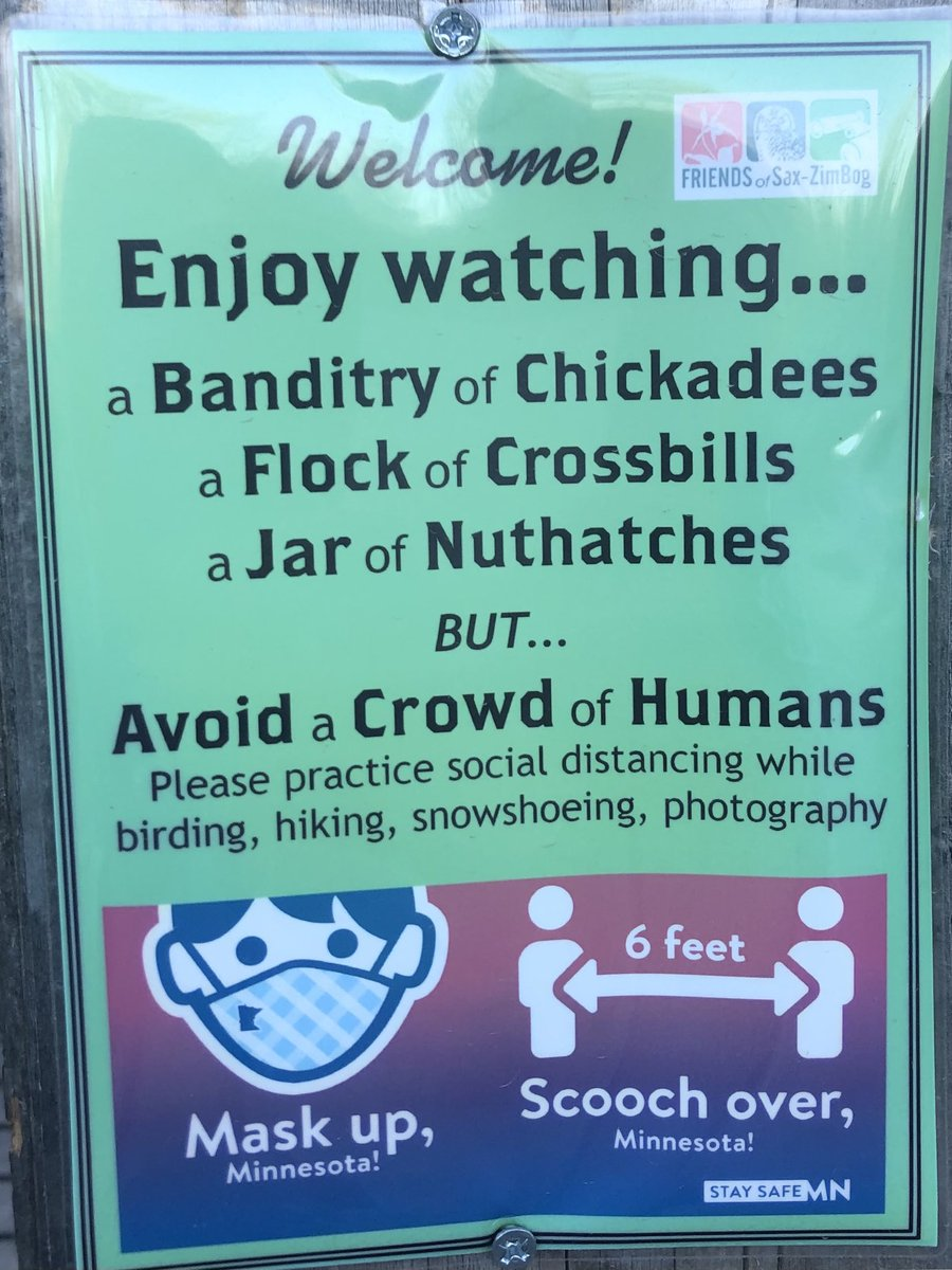 And a murder of crows https://t.co/aV0djh2XAD