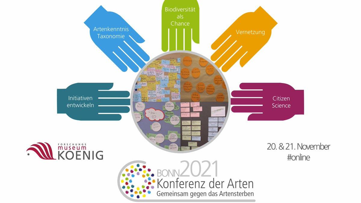 Direkt im Anschluss an die #FörTaxCon! #FörTaxConFreitag  Möchtet ihr mitmachen? Beitragstitel und Kurzbeschreibung bitte bis 13.6. an artenkonferenz@leibniz-zfmk.de