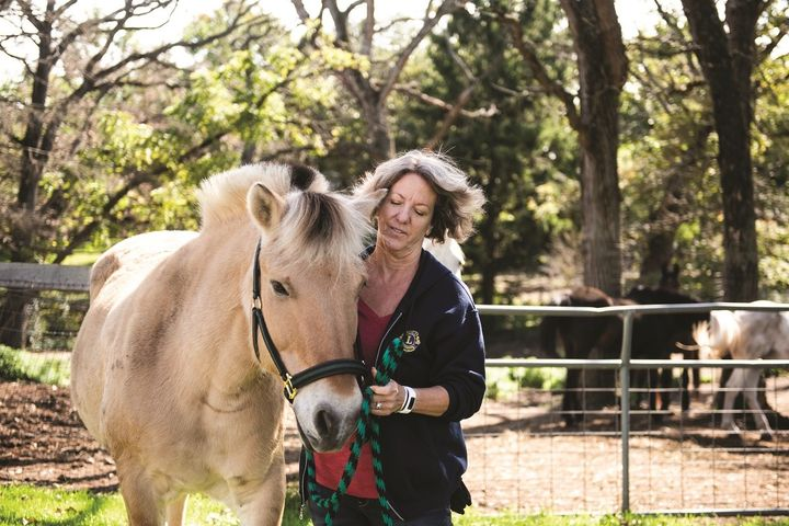 test Twitter Media - [From the LION Magazine Archives] For Lion Diane, saving an old horse was just the beginning. She created a specialty branch club, the Kettle Moraine Equine Lions Club, to focus on supporting the needs of Horse Power Healing Center 🦁 🐴 ➡️ https://t.co/NUxyWFhoCl https://t.co/bUsz3W9oTT