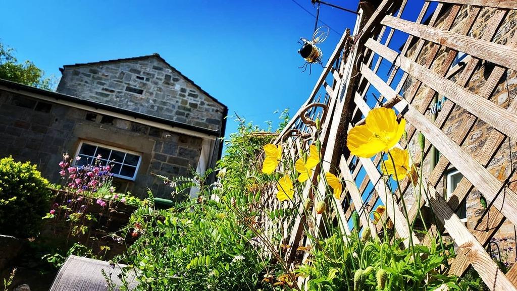 test Twitter Media - Wildflowers, bees and sunshine in Yorkshire.  #weekendbreak #yorkshire #blueskies #warm https://t.co/hFgdkGJ6KY https://t.co/mYBBDDe4CP