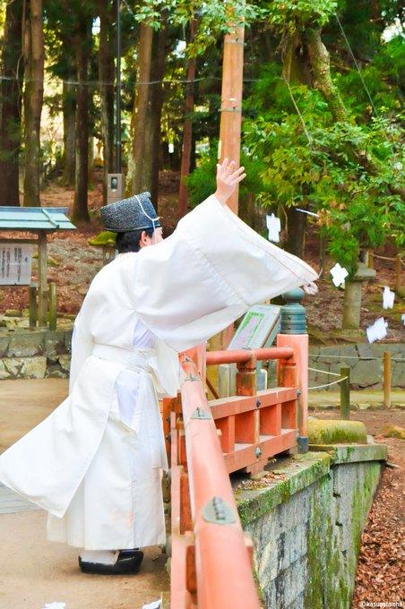 KASUGASHRINEの画像