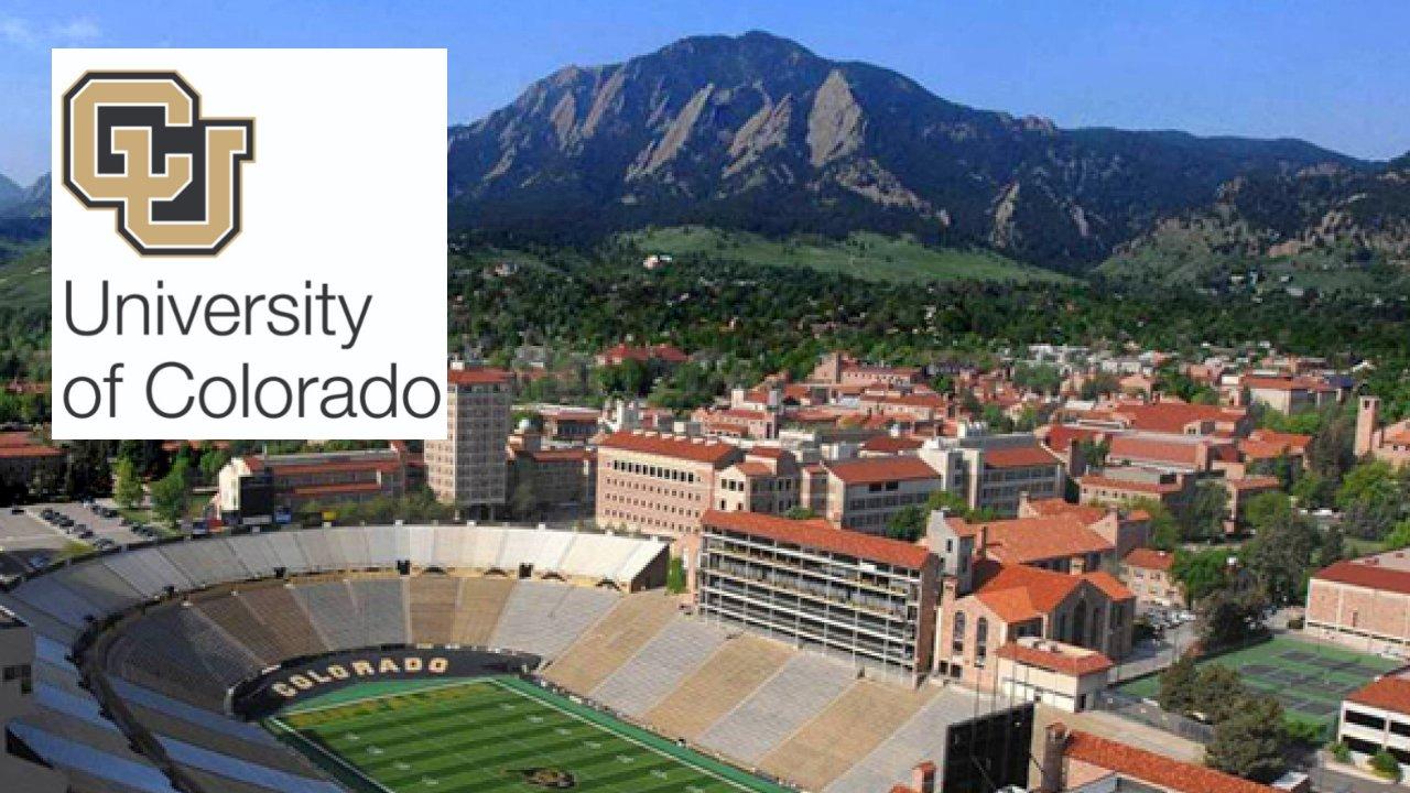 Postdoctoral Fellow Position at Branco lab, University of Colorado, USA