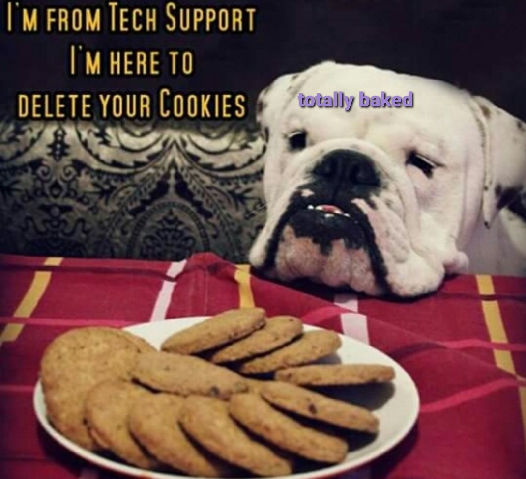 The CUTEST tech support! 😍🐶 We're trying out a new Cookie flavor today. 🍪 Can't wait to show y'all! They're gonna be so pretty. 🤩 Hope everyone has a Totally Beautiful Sunday!   #totallybaked #cookiedelivery #alamoranch #sanantonio https://t.co/8qvnSy6yFD