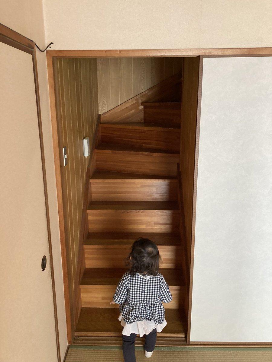 まるでジブリのよう。マンション買ってリノベしようとして押し入れをあけたら「謎の階段」があった。