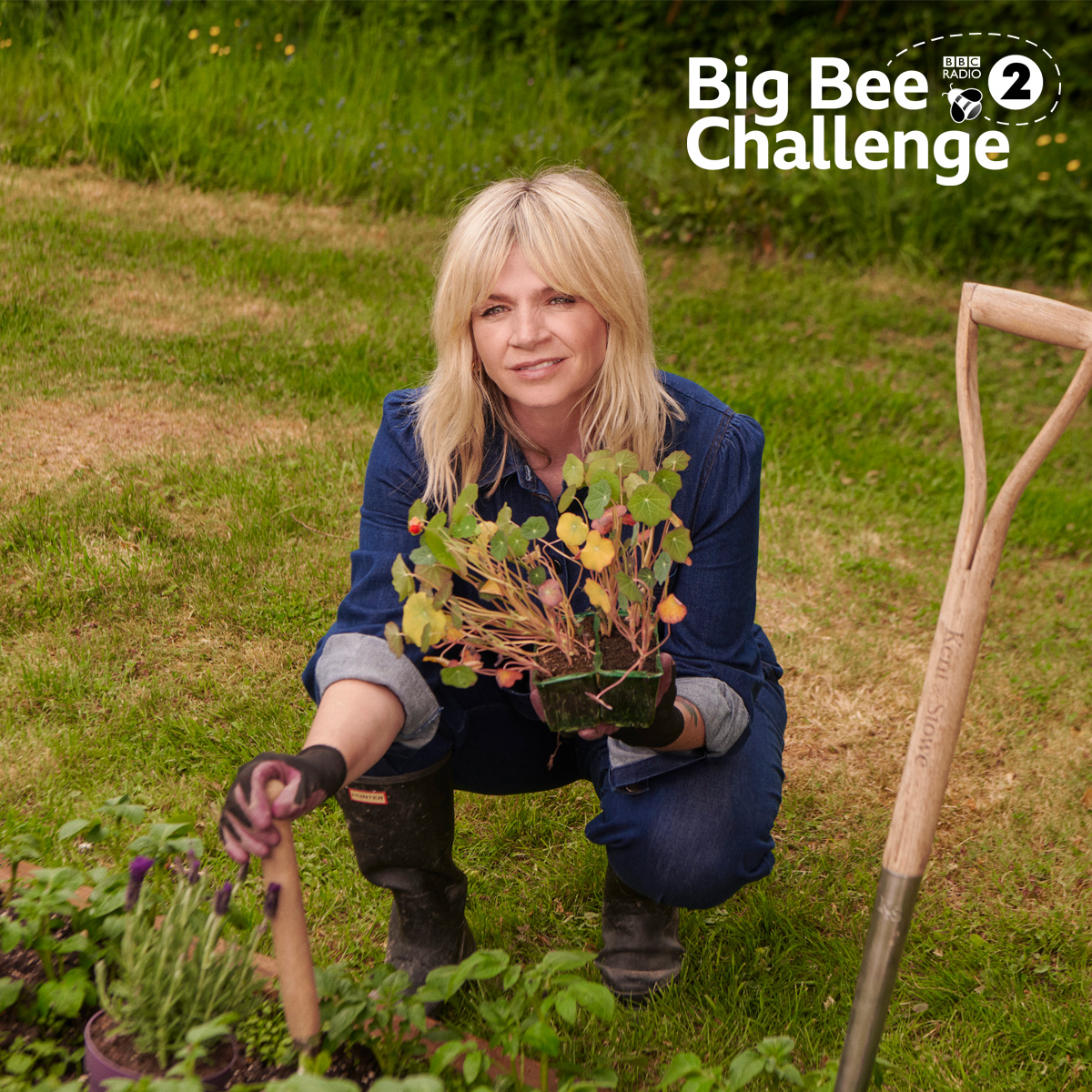 We've partnered with @BBCRadio2 to launch the #R2BigBeeChallenge, a brand new initiative to shine a light on the plight of our bee population 🐝  With wild bees and other wild insects in decline, we all need to do everything we can to help our precious pollinators. https://t.co/CEk2uZNf4l