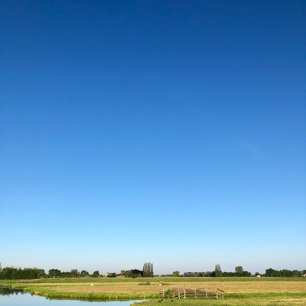 Een ochtend om door een ringetje te halen op 7 juni 2021 #goedemorgen #buitenmens #vroegevogel #groendijck #westeinde #driebruggen #platteland #groenehart #santosha #adem https://t.co/9eBZRzwyss