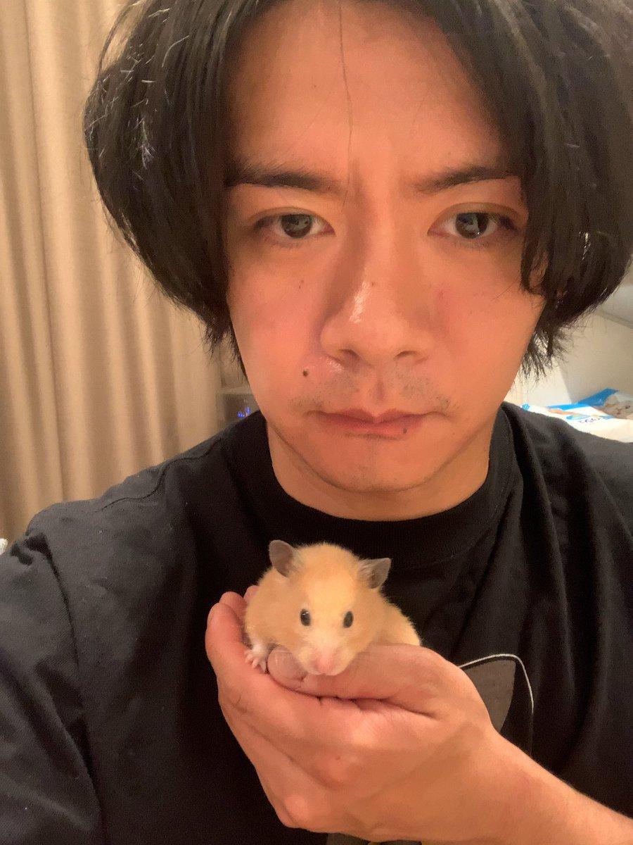 野田クリスタルさんが飼っているハムスターが1歳に!スーパーはむはむPARTYを開催する模様!