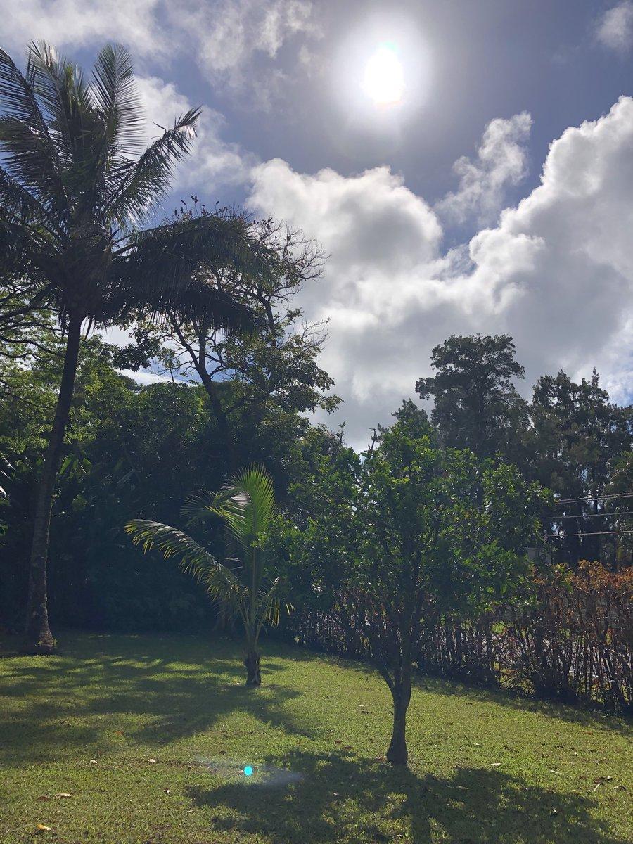 test Twitter Media - Breezy beautiful Monday in Haiku. #CMWeather #Maui #Haiku #BeautifulDay #MagicalMaui #MauiNoKaoi https://t.co/Oh7A0w9QVu