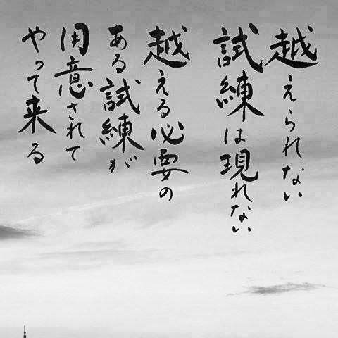 MikioOsawaの画像
