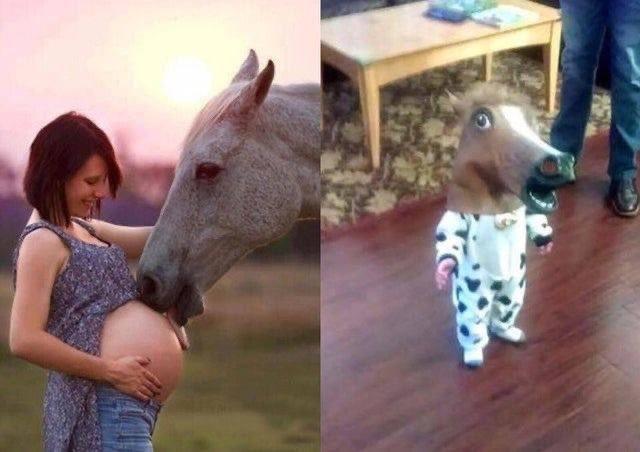 馬術経験のあるフォロワーから学ぶ?馬がしっぽを振る理由!