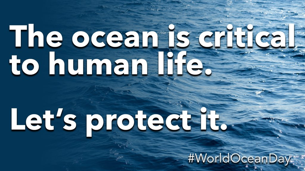 Our ocean sustains all life on Earth 🌎. This #WorldOceanDay, we remain committed to a more equitable & just ocean & Great Lakes science and conservation community. Together we can find Scientific Solutions to protect one of our world's most precious resources: our ocean 🌊 https://t.co/4ytNO8wKIj
