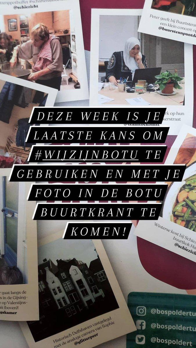 BospolderT photo