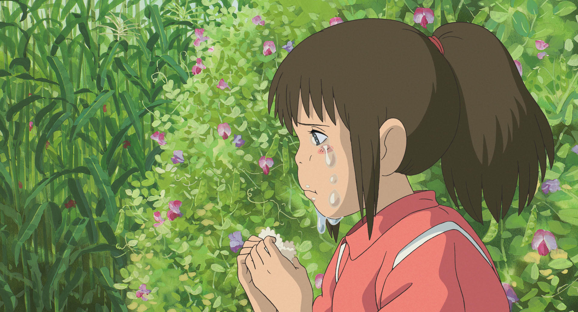 Miyazaki Photo,Miyazaki Twitter Trend : Most Popular Tweets