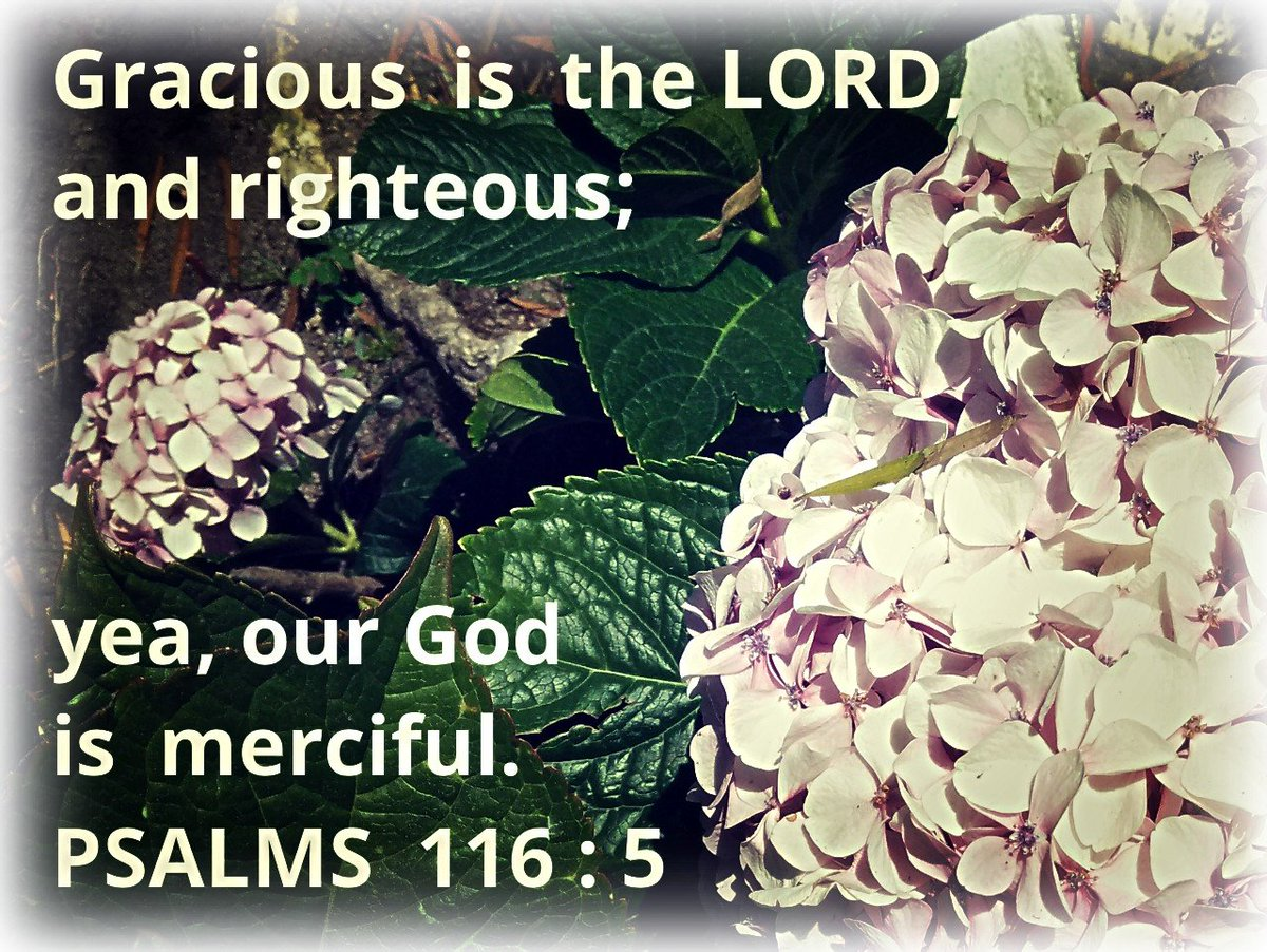 #WordsOfWisdom #quotes #quoteoftheday #Bible #Mercy #blessings #Praise #Thank #bless #TheLord #Psalms https://t.co/kfAjiXISSP
