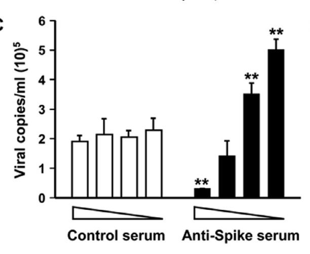 SARSは新型コロナと遺伝子は8割同じで親戚。 そのSARSはADEを起こすとされてる。下のグラフを見て欲しい。...