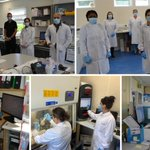 Image for the Tweet beginning: The Lab in #MRHPortlaoise have