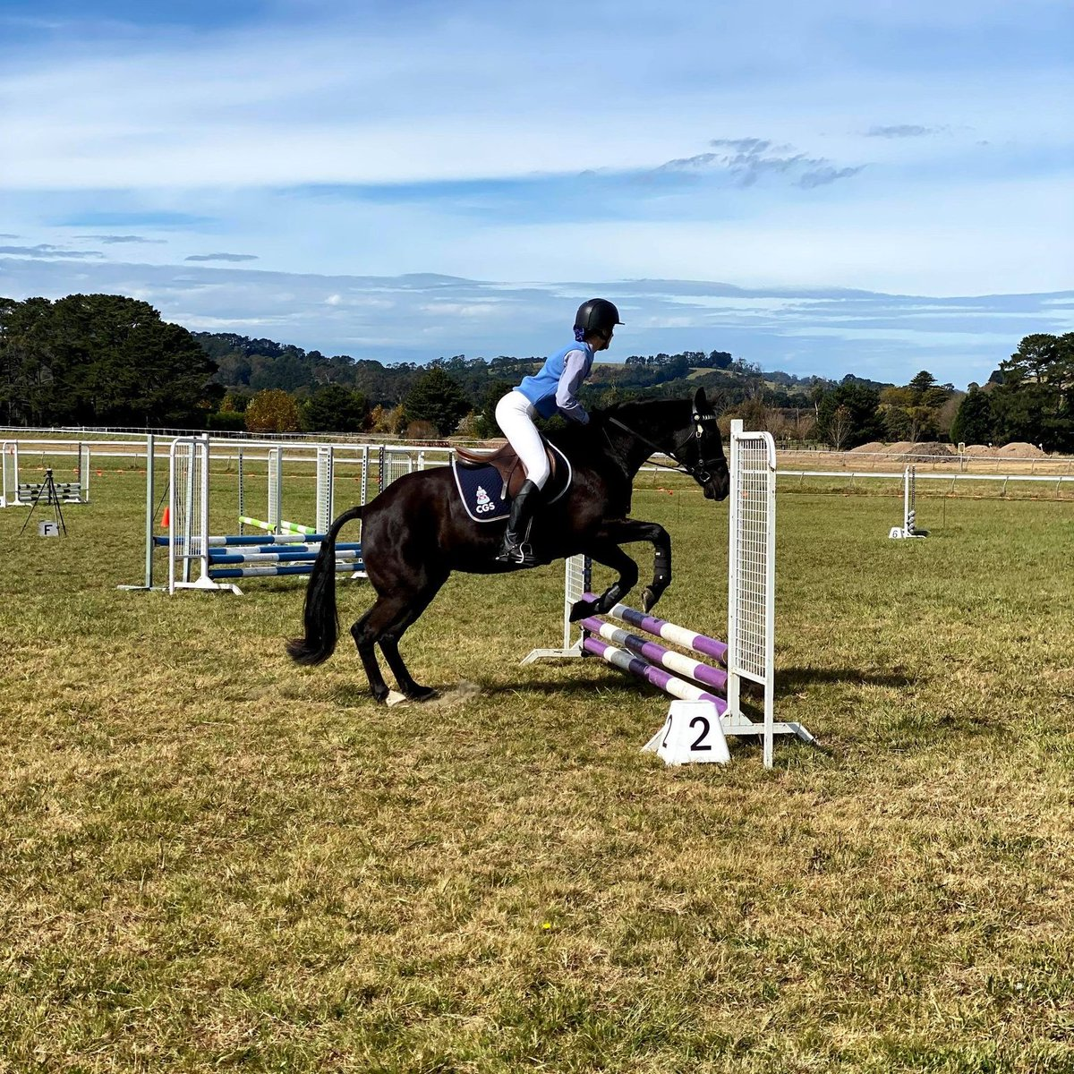 North West Equestrian Expo Coonabarabran was held earlier this month. Congrats to both CGS Seniors for their fantastic result:  Paloma 5th in Combined Training Suki 9th in One Day Event Suki 1st Restricted height show jumping Suki 4th Novice b Dressage Suki 5th Novice c Dressage