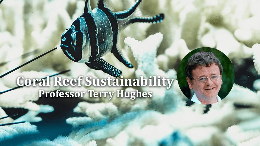 test Twitter Media - Online DIAS Day Lecture- 18th June at 1pm  Internationally acclaimed Marine scientist @ProfTerryHughes will deliver the annual DIAS Day Lecture on coral reef sustainability and the damaging effects of coral bleaching on climate change.  Registration Now: https://t.co/APW6gcJzJP https://t.co/kgeehAUlQa