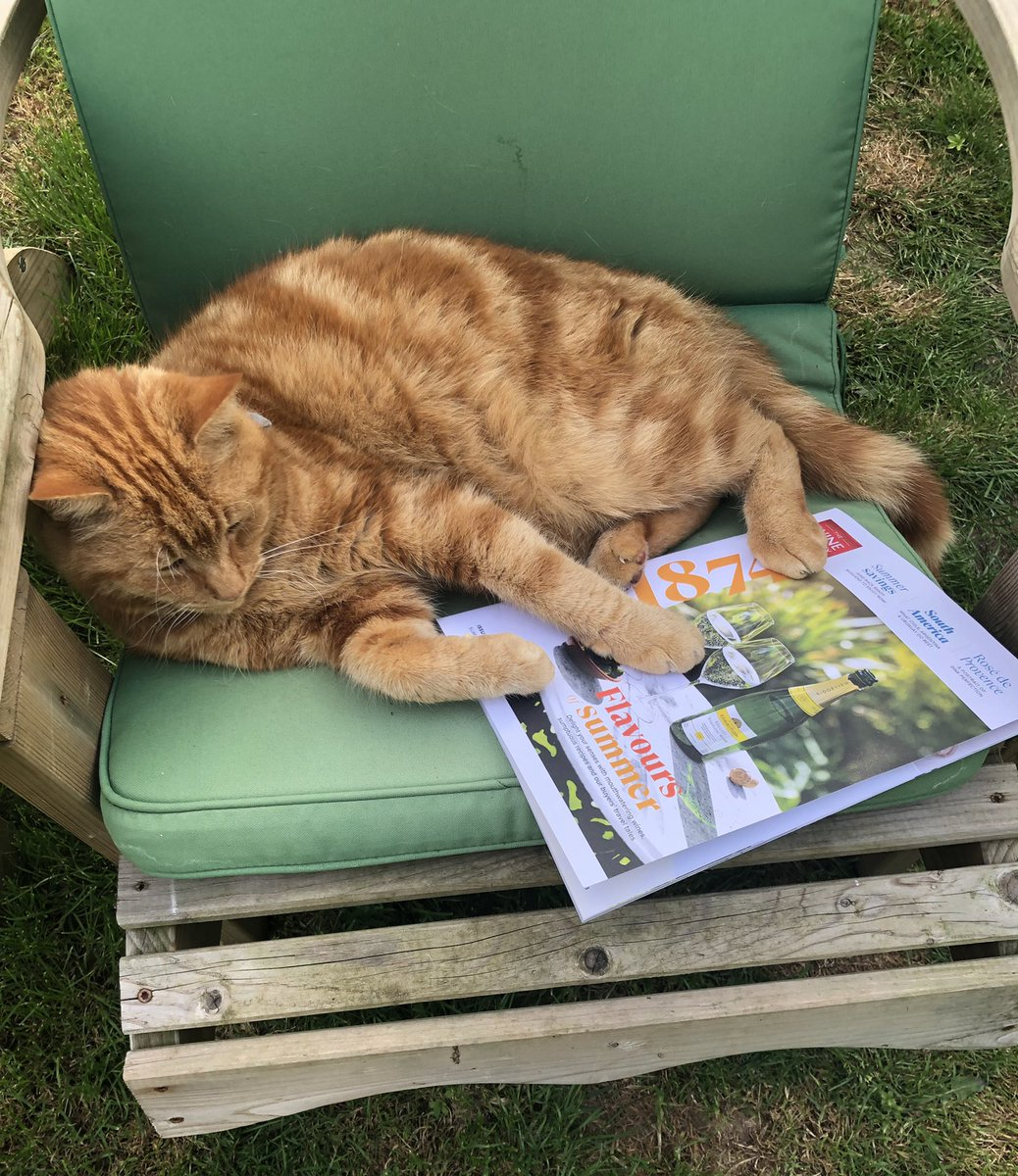 Looks like everyone wants to get their paws on our 1874 magazine! 🐾